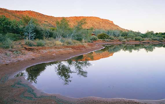 Alice Springs Desert Park, Northern Territory