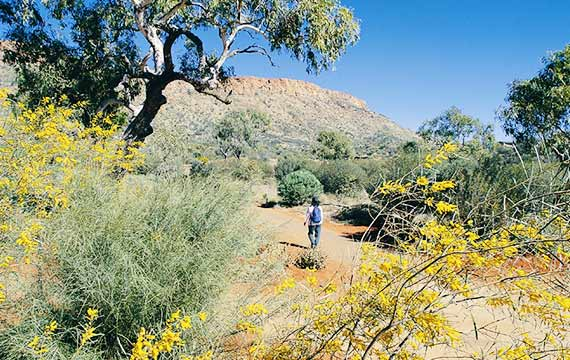 Alice Springs Desert Park, Visitor Trail