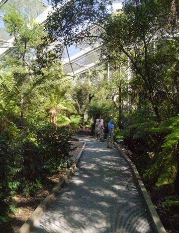 Lyrebird Aviary, Healesville Sanctuary