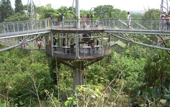 Lory Loft Jurong Bird Park
