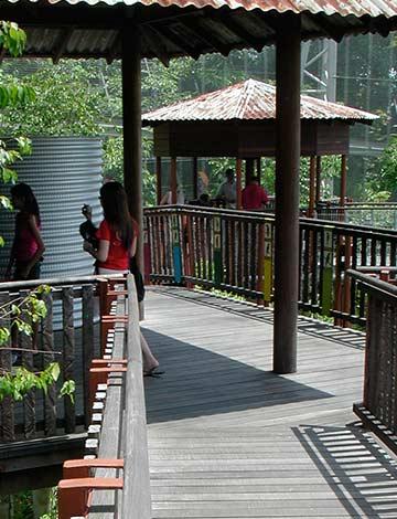 Lory Loft Bird Park Exhibit Singapore
