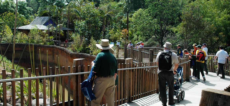 Visitors at Orangutan Sanctuary Melbourne Zoo